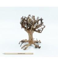 Bonsai Mammoth S από Φυσικό Ξύλο, Χειροποίητο